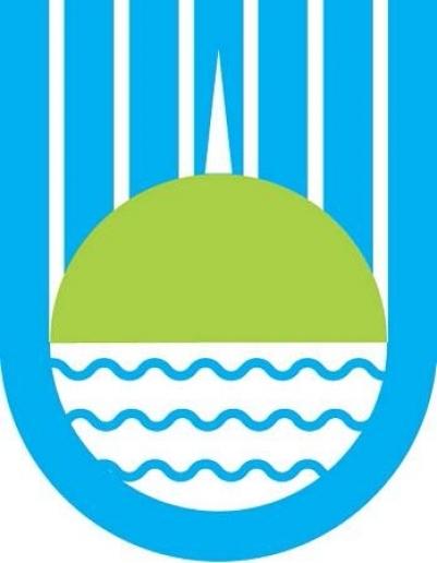 Герб города биробиджана